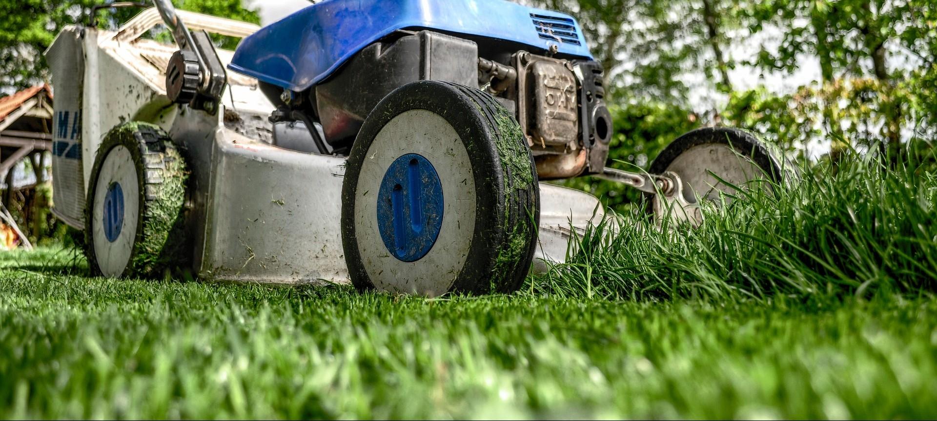 Tagliare l 39 erba come quanto perch vivaio scariot - Cosa mettere al posto dell erba in giardino ...