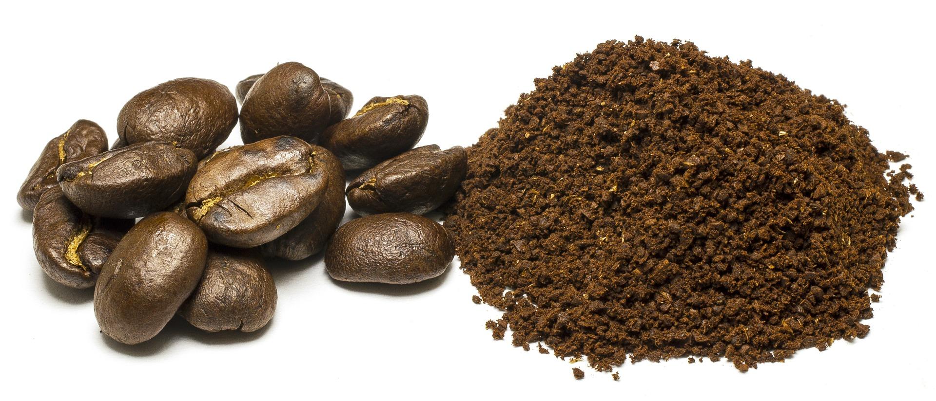 5 modi 1 per usare i fondi di caff per curare piante. Black Bedroom Furniture Sets. Home Design Ideas